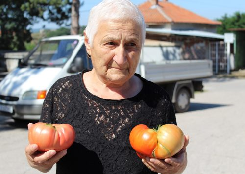 Аграрният туризъм – възможност за привличане на доходи