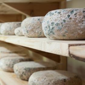 Добри практики при производство на храни и изисквания към етикетирането